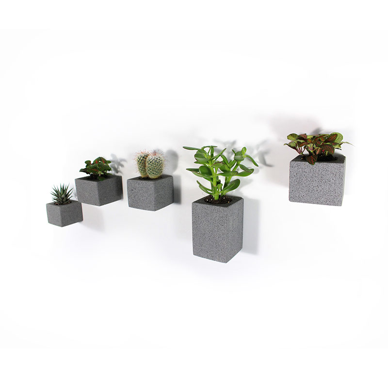 M Dex Design Aera Wall Planters by Miles Dexter