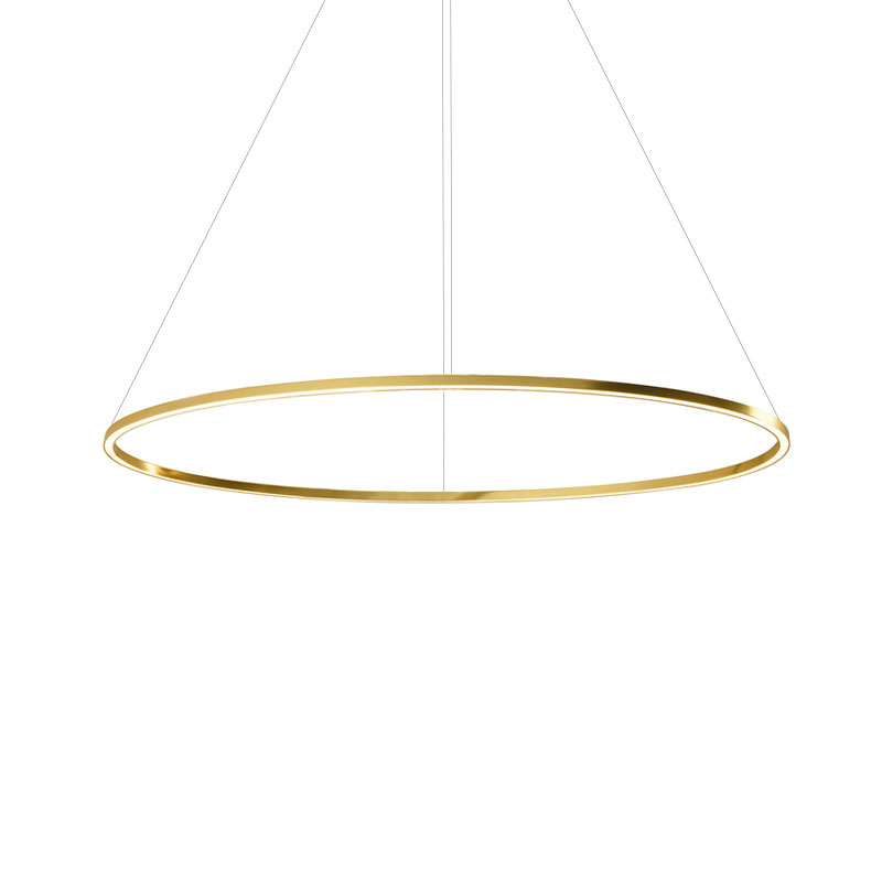 Nemo Lighting Ellisse Major Downlight Pendant Light by Federico Palazzari